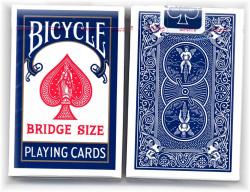 Bicycle Bridge Blue